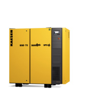 BSD SFC Variable Speed Drive