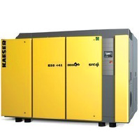 ESD SFC Variable Speed Drive